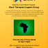 Black Therapists Support Group